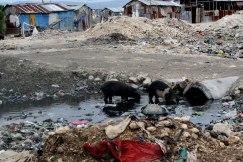 05-Haiti